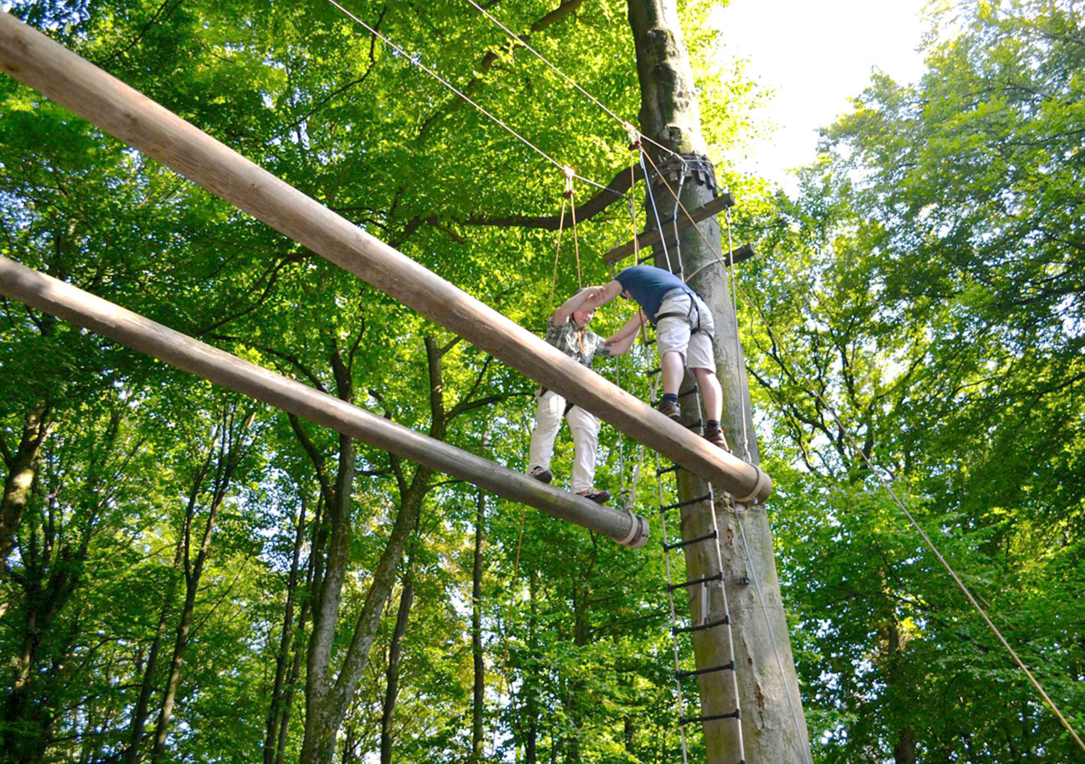Hochseilgarten | Outdoor | Experience | DEEPWOOD