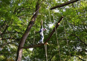 Hochseilgarten   Outdoor   Experience   DEEPWOOD