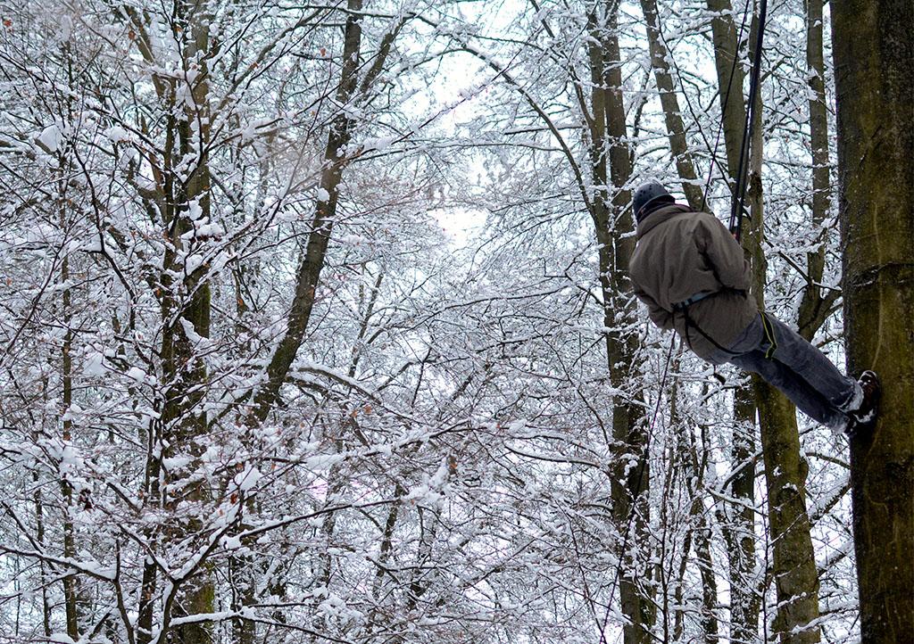 Während der DEEPWOOD Weihnactsfeier seilt sich ein Mann von einem Baum ab.