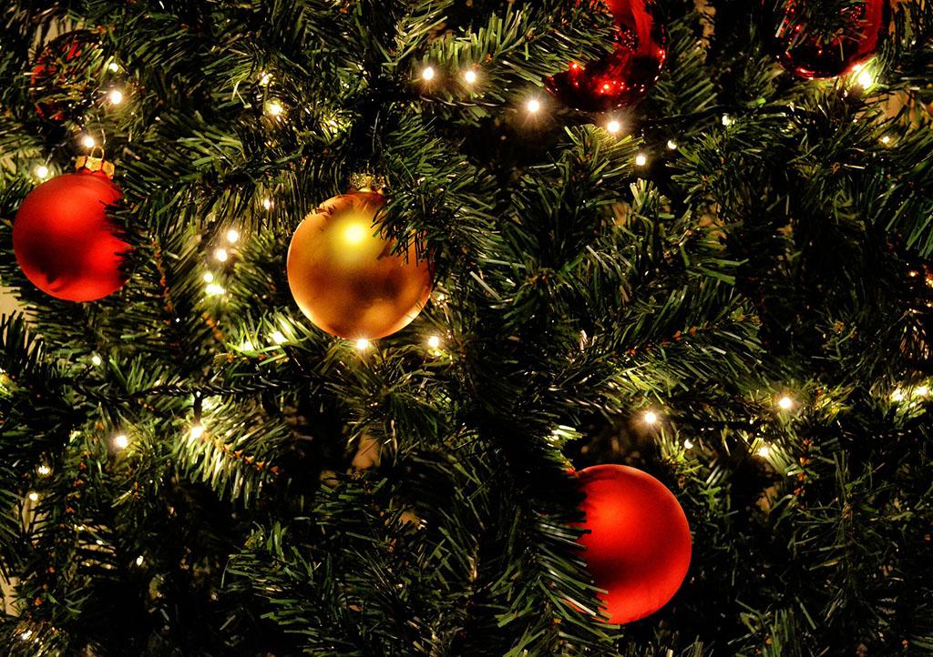 _0001_christmas-tree-1479025_1920