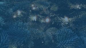 Tannenzweige als Deko auf der DEEPWOOD Weihnachtsfeier