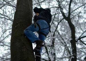 Auf der DEEPWOOD Weihnachtsfeier steigt ein Mann auf eine Leiter